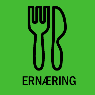 Logo for SeniorErnæring