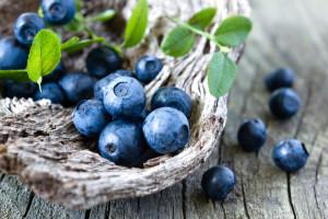 Antioksidanter og hjernefunksjon